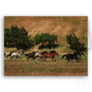 wild_horses_running_card-p137309000032994250q6k5_400
